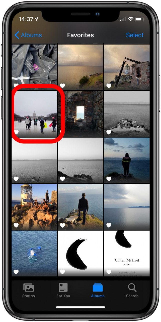 the photos app with an image highlighted
