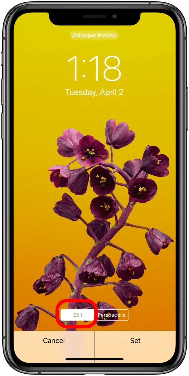 Ipad Iphone Wallpaper How To Change Your Home Lock Screen