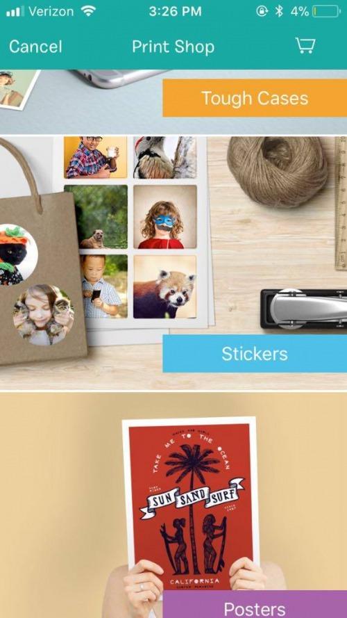 The Ultimate App for Dog Photos: BarkCam